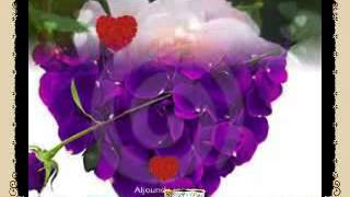 Aljoundy Roses-you tube - ❤♫❤Kathem Elshaher_hall endaki shak هل عندك شك❤♫❤