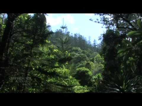 Governors Lodge Resort, Norfolk Island