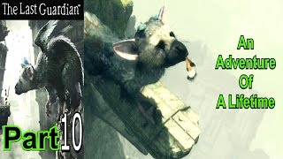An Adventure Of A Lifetime | The Last Guardian | Part 10 | Gameplay | Live Commentary