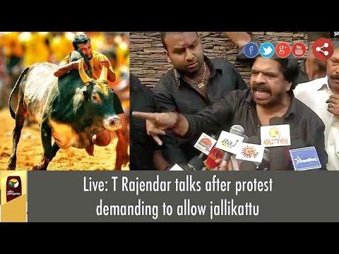 Live: T Rajendar talks after protest demanding to allow jallikattu