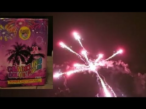 Crackling Color Palm 16 Shot Fireworks By World-Class  In Action Review With Delz