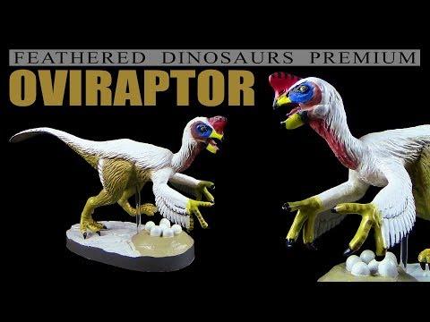 Colorata ® Oviraptor - Feathered Dinosaurs Premium - Unboxing Teil 2
