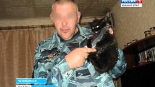 Демонстративная жестокость полицейского(С ножом у горла котенка. Участковый из Верхнего Уфалея выложил в социальную сеть шокирующую фотографию:..., 2016-02-01T16:11:57.000Z)