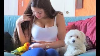 Angie Varona, Paco, and Bentley
