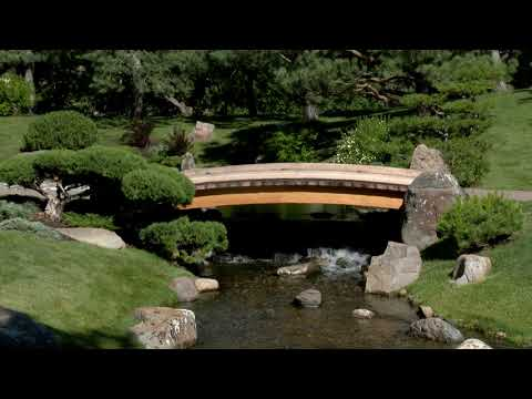 Nikka Yuko Japanese Garden for the 50th Anniversary