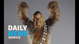 Chewbacca stops Mr Incredible Vs Batgirl fight - DNS