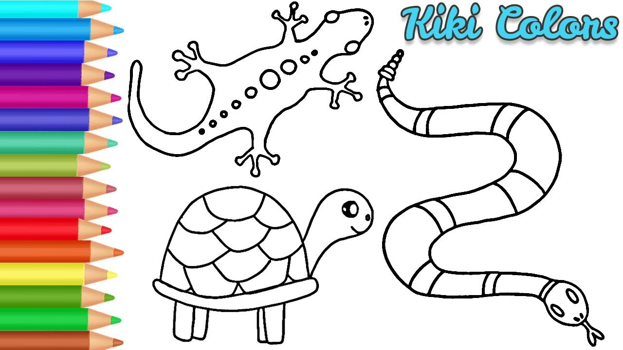 Drawing Reptiles Easy   Teach Drawing for Kids and ...