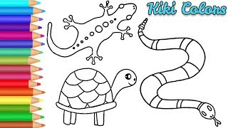 easy drawing reptiles coloring toddlers