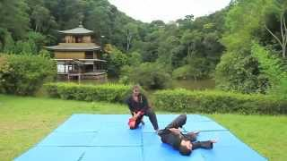 Video Treino Externo de Hapkido Jik Bu Kwan no Kinkakuji do Brasil download MP3, 3GP, MP4, WEBM, AVI, FLV September 2018