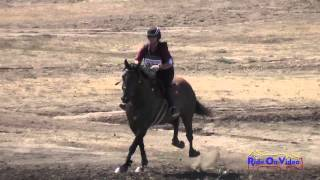 237XC Connie Arthur on Desert Pearl Novice Horse Cross Country Woodside August 2014