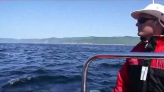 Whale-watching at Pleasant Bay, Cape Breton Island (Nova Scotia, Canada) 120611a