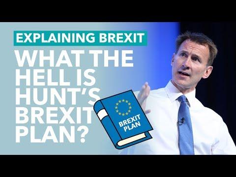 Jeremy Hunt's Brexit Plan - Brexit Explained