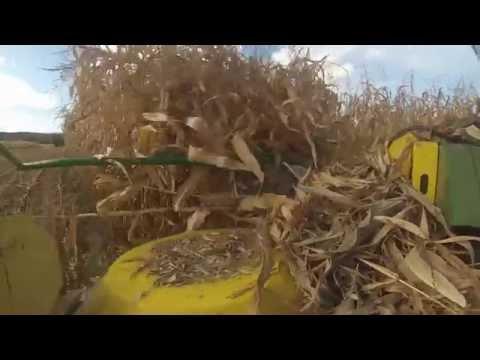 Fox Dairy Farm Film