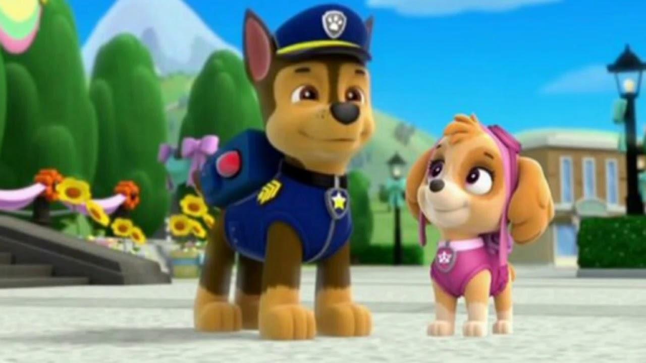 Скай и гонщик из щенячий патруль