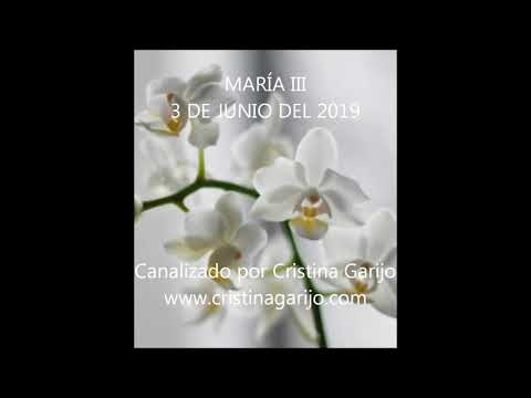 CANALIZACIÓN MARÍA III
