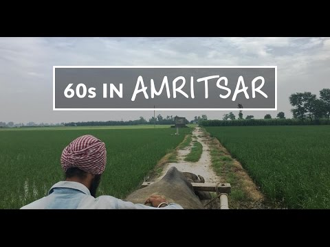 60 Seconds in Amritsar | The Travel Intern