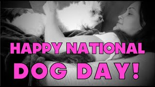 VLOGust: Happy National Dog Day!