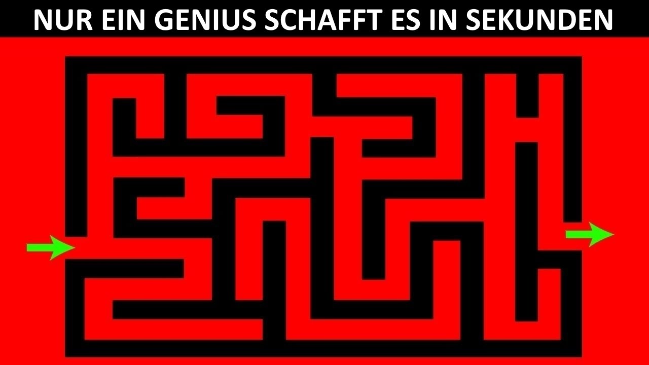 Intelligenz Rätsel