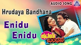 hrudaya bandhana quotenidu eniduquot audio song ambareeshsudharani akash audio