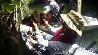 Kayak Fishing for Guam River Snappers (HD available)