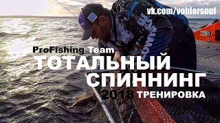 Как поймать Окуня, Судака, Щуку на Волге! Тотальный Спиннинг 2018. Рыбалка на хищника летом.