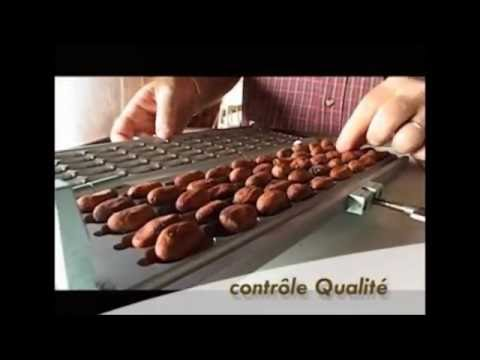 Pralus : du cacao au chocolat