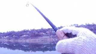 Ловля крупного судака, сома и щуки на Оке в ноябре