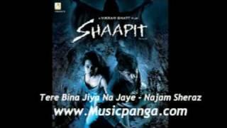 Tere Bina Jiya Na Jaye - Najam Sheraz