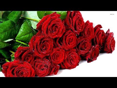 Букет прекрасных нежных роз  Для тебя