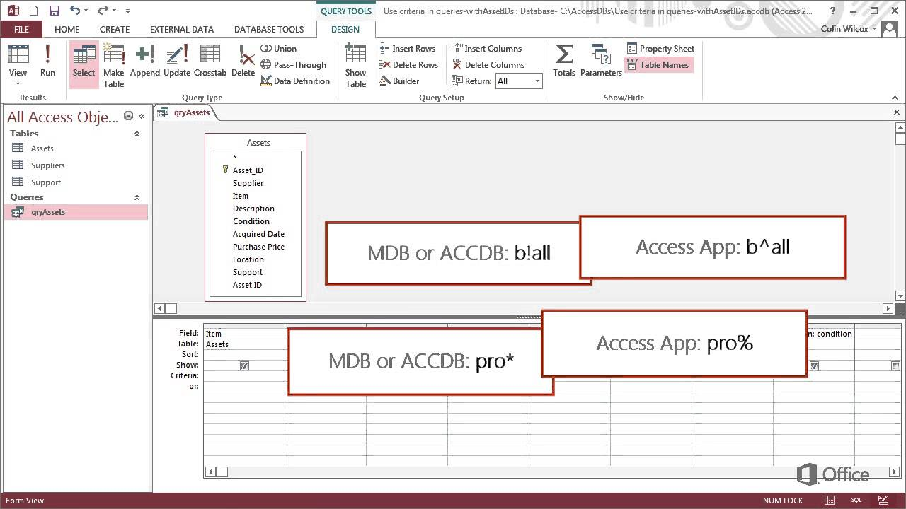 Training - Use query criteria in Access 2013 Using wildcards in query  criteria - Video 4 of 4