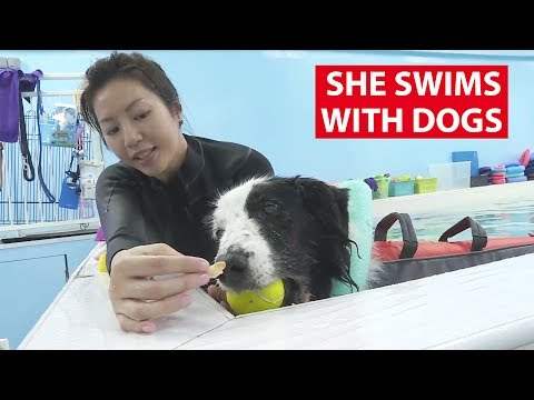 She Swims with Dogs | On The Red Dot | CNA Insider