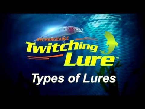 Rechargeable Twitching Lure: Types of Lures