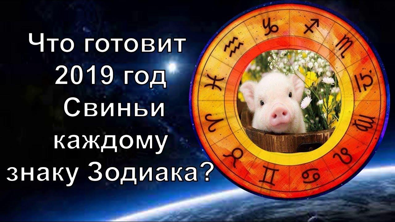 Что готовит 2019 год каждому знаку Зодиака