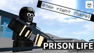 STOP IN THE NAME OF THE LAW!!! | Roblox Prison Life