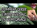 -Ep10- L'Assist Feeding , comment démarrer les récalcitrants...
