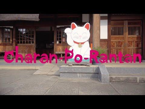 チャラン・ポ・ランタン / 猫の手拝借