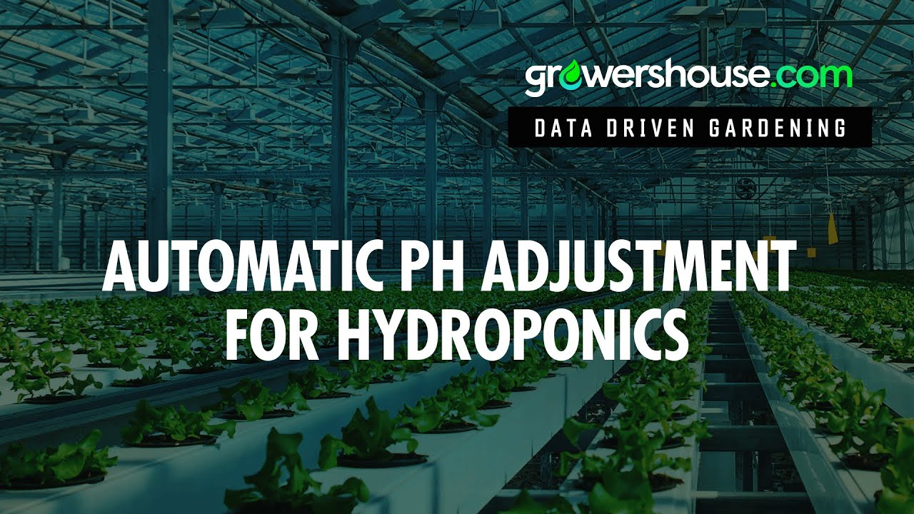 Perfect pH Hydroponics Automatic pH Adjustment Technology Review and Test of Zelda Horticulture