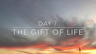 "Day 7 👉🏼The gift of life. ""A day in the life of a PH ..."