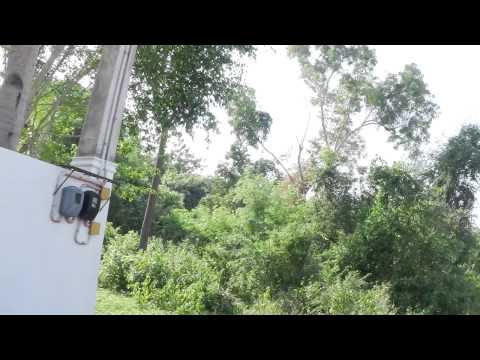 PROPERTY LISTING : CLIFF BEACH Songculan Dauis Bohol Philippines