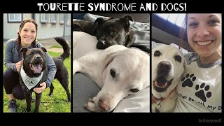 Tourette Syndrome and Dogs