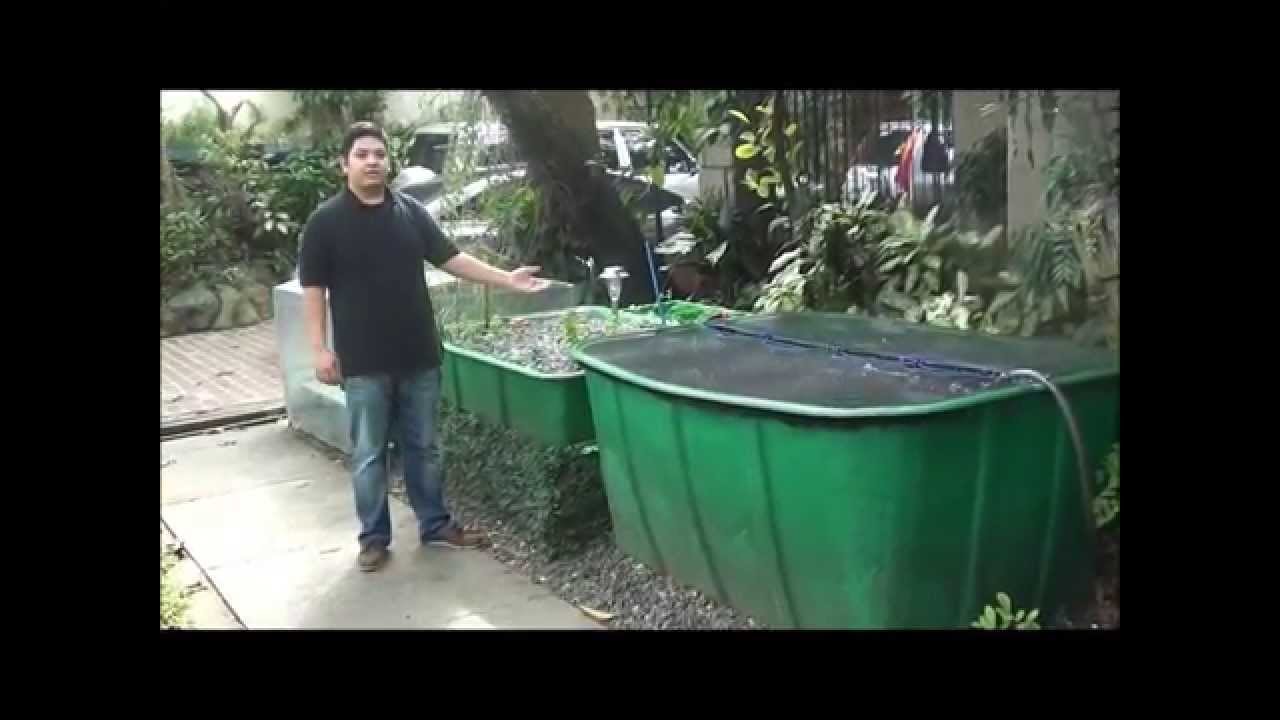 Aquaponics Philippines Made Cascade System With