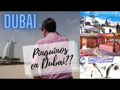 Dubai Burj Al Arab Por Dentro El Mejor Hotel Del Mundo Ski En