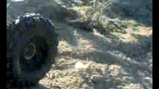 Raid veiga de lila - Lobos Solitarios