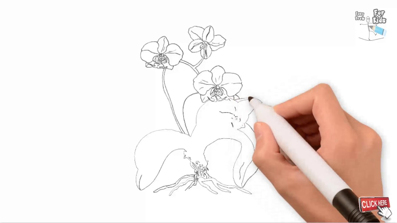 how to draw a flower tree black and white outline drawing easy