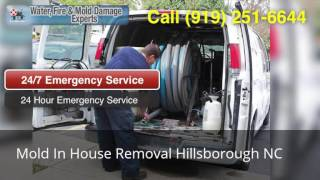 Mold In House Removal Hillsborough NC (919) 251-6644
