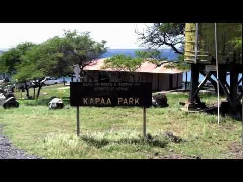 Kapaa County Park, Mom & Roxy