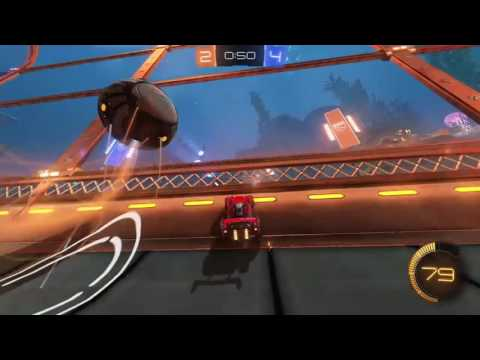 """""""Flying Forever"""" 