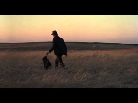 Best Shots Of Terence Malick