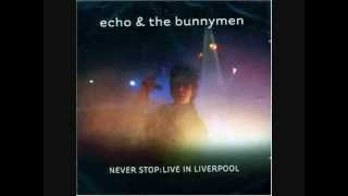 Watch Echo  The Bunnymen Stars Are Stars the Life At Brians Sessions video