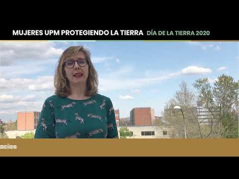 Carmen Avilés Palacios